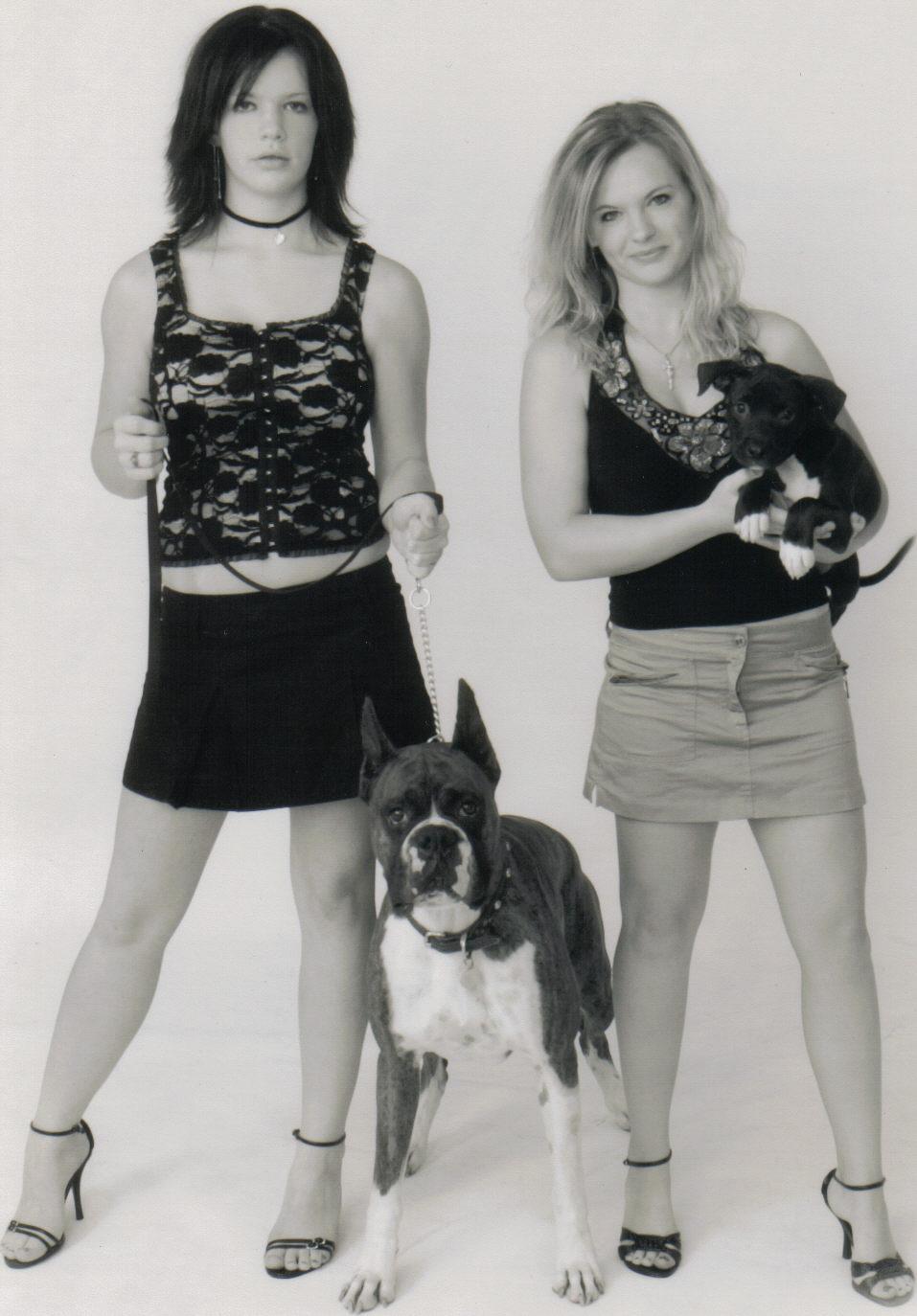 Westie+puppies+wisconsin