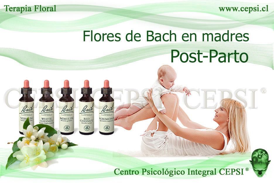 Flores De Bach Post Parto