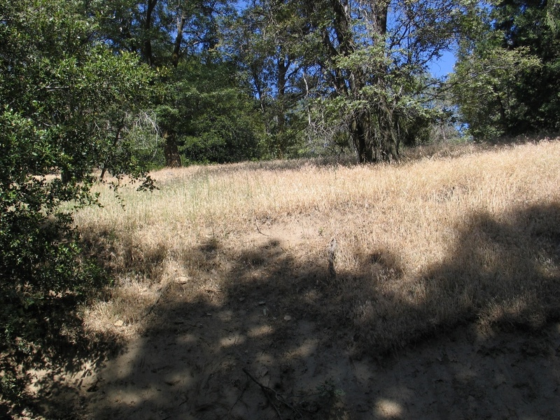 land for sale by owner, ca, california, san bernardino, mountain, skiing land, snowboarding cabin, land, wilderness, beautiful views, away from suburbia, cities, smog, crime, pollution, safe area to raise kids, safe area to raise a family, peaceful, quiet, rural
