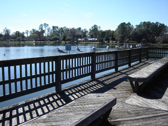 investment, property, refinance, finance, financing, low, monthly, payments, north, florida, land, for, sale, cheap, boardwalk, lake, francis