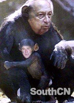 チンパンジー大統領を応援するスレ (725)