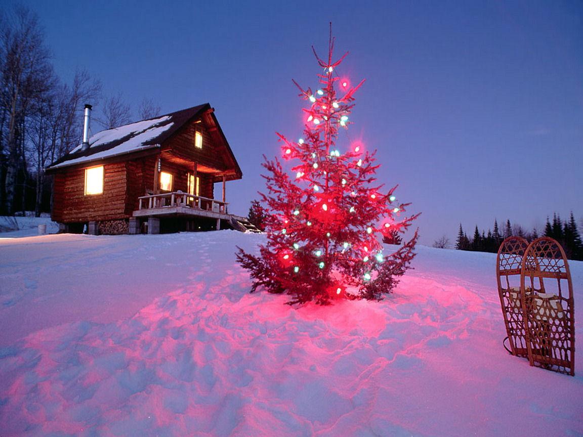 Torpl Kerstboom Achtergronden Vector