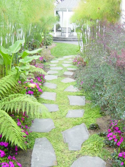 Tropical Side Yard Pathway Mk Landscape Design
