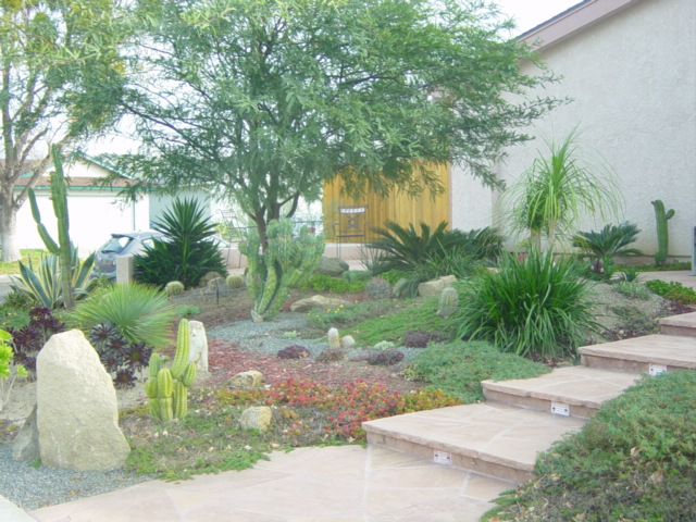 2 landscaping front yard landscaping ideas succulents