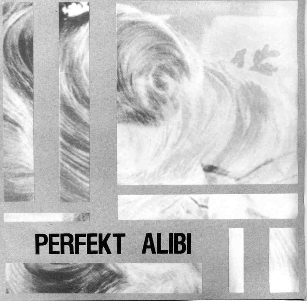 Perfekt Alibi - Maktens Ansikte