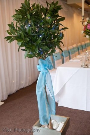 Aston Hall Hotel weddings bay tree