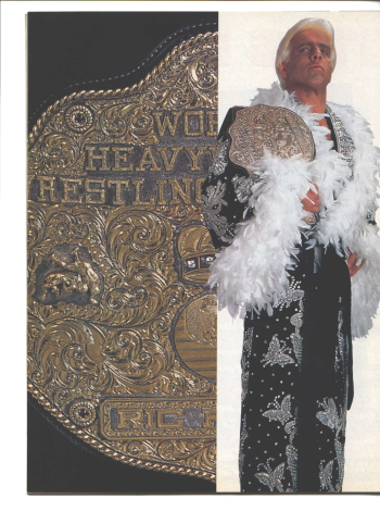 Ric Flair from 1991 after he entered the wwe