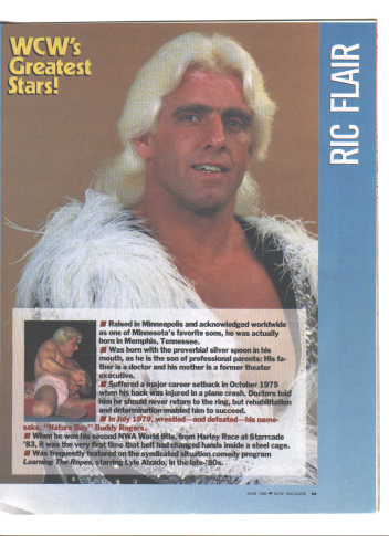 Ric Flair from 1993